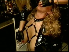 scenes from a dutch bdsm club #87