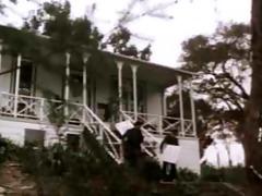 113116 - memphis cathouse blues