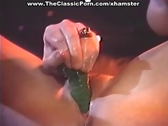 wet slit toy and cock fuck